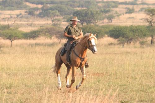 South%20African%20Horseback%20Safaris%20011.jpg